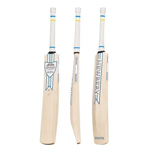 Newbery Cricket Unisex's Invictus Cricket Bat, Blue/Yellow, Medium - Short Handle