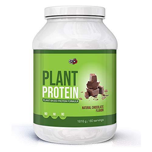 Plant Based Protein Powder Blend Chocolate 6 Sources Pea Rice Hemp Pumpkin Sunflower Carob Probiotics Digestive Enzymes Gluten Lactose Soy Dairy Free Natural Sweetener Stevia Vegan 15 30 60 Servings