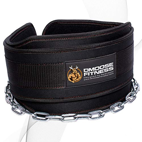 DMoose Dip Belt with Chain For Pull Ups, Training, Weightlifting, Powerlifting and Bodybuilding Workouts, 36 Inches Heavy Duty Steel Lifting Chain, Comfortable Dipping Belt With Neoprene Back Support